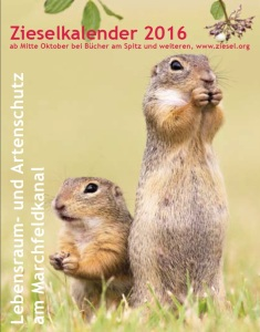 Ziesel-Kalender 2016 - Coming soon!