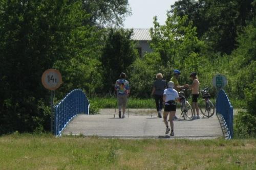 Bislang querte kein einziges Ziesel über diese Brücke den Marchfeldkanal