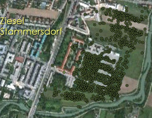 Ziesel-Kolonie beim Wiener Heeresspital