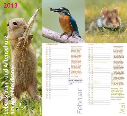 Artenschutz Kalender 2013 - Lebensraum- und Artenschutz am Marchfeldkanal