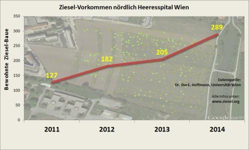 Bestandsentwicklung des Ziesel-Vorkommens nördlich des Wiener Heeresspitals seit 2011