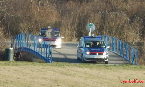 Symbolfoto - Polizeieinsatz am Marchfeldkanal